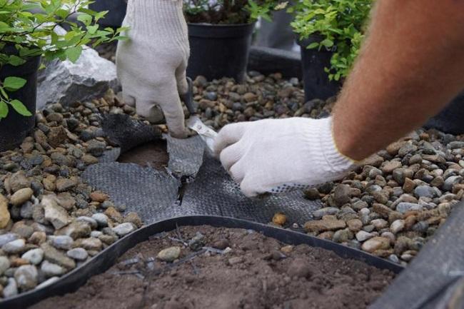 отверстия в геотекстиле для растений