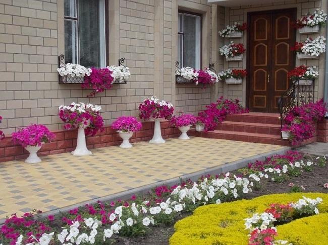 цветы в вазонах и кашпо на мощеном дворике