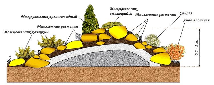растения для альпийской гоки