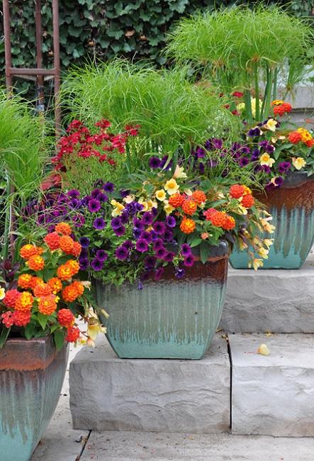 Контейнерное цветоводство в саду