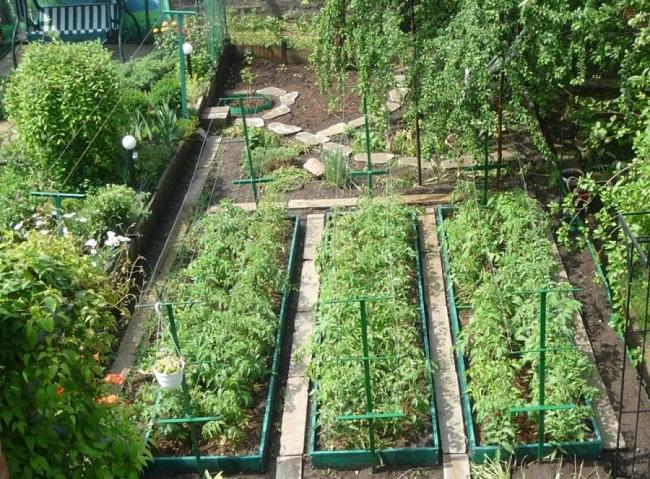 расположение огорода на участке
