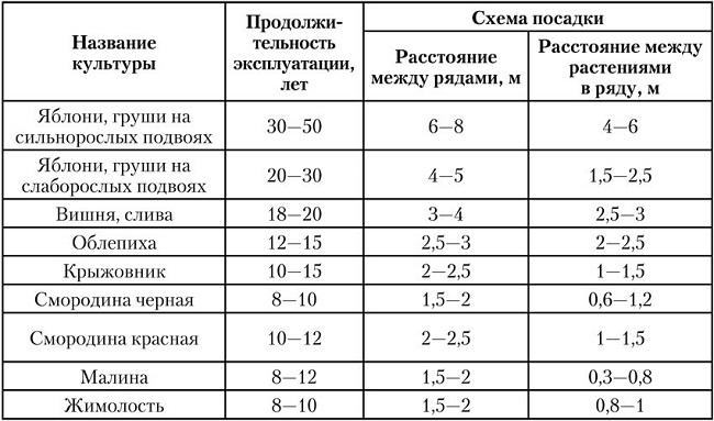 таблица высадки плодовых деревьев