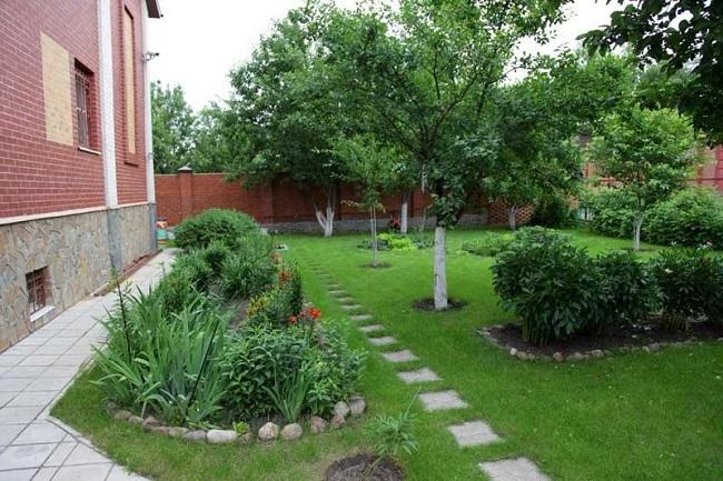 фруктовый сад в ландшафтном дизайне