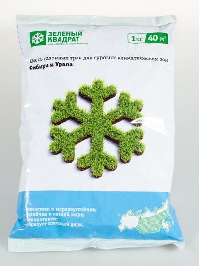 газонные травы для сибири