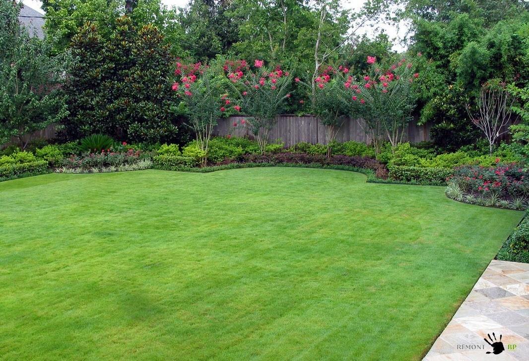 как выбрать газонную траву на дачу