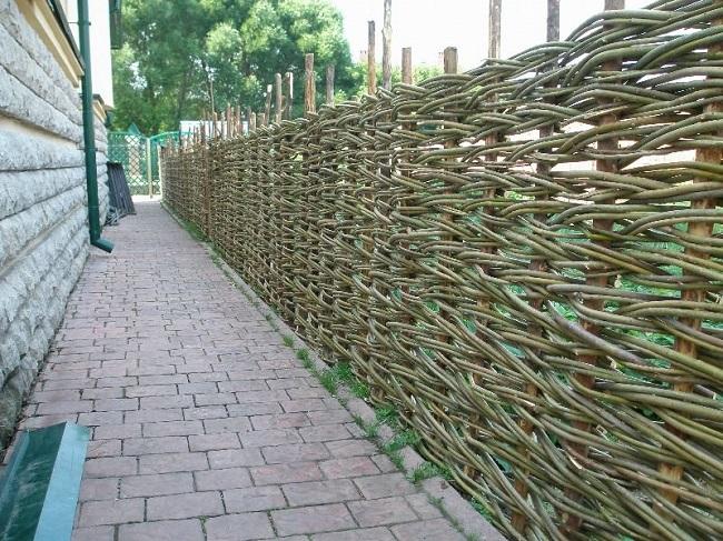 забор из веток ивы