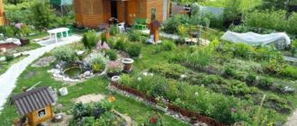 ландшафтный дизайн на садовом участке