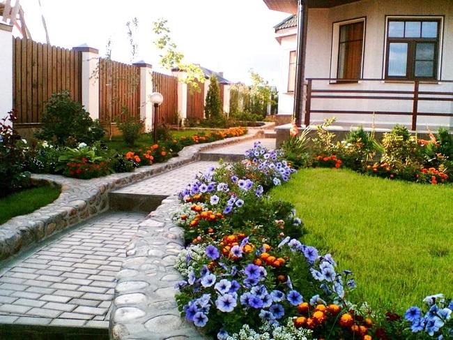 цветочный бордюр вдоль дорожки на загородном участке