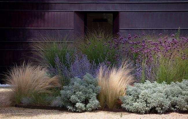 Рабатка из декоратвиных трав перед домом