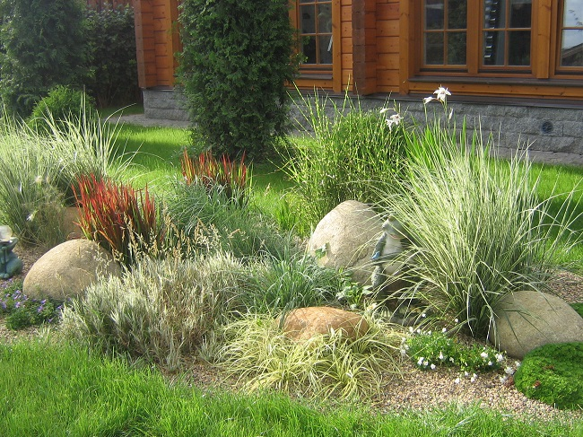 Рокарий со злаками в садовом участке