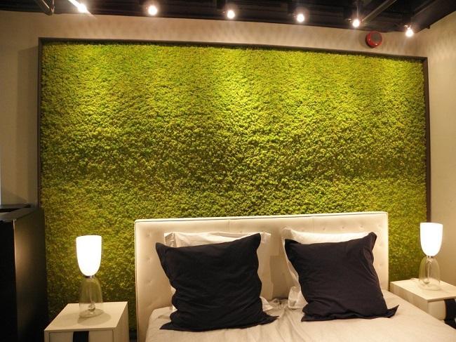 декоративный мох в квартире