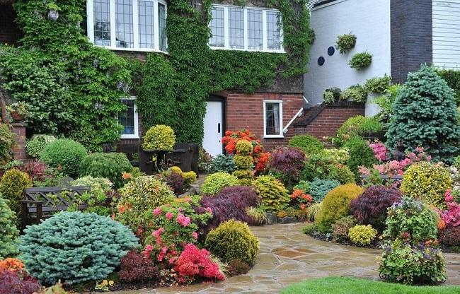 голландский сад во дворе