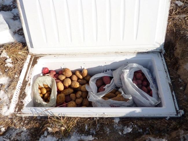 мини погреб из старого холодильникана даче
