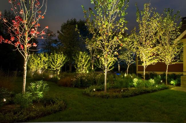 точечная подсветка деревьев и кустарников