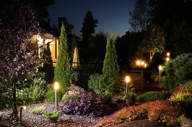 подсветка деревьев и кустарников сверху