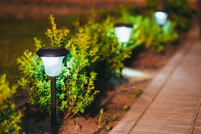 подсветка кустарников сверху фонарями