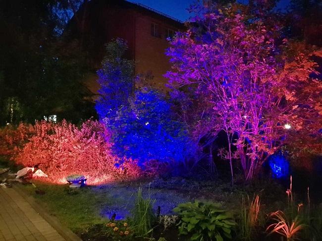 цветные светильники для кустарников и деревьев