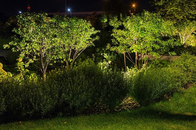 подсветка кустарников изнутри