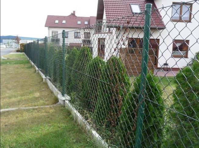 забор из сетки рабица между соседями