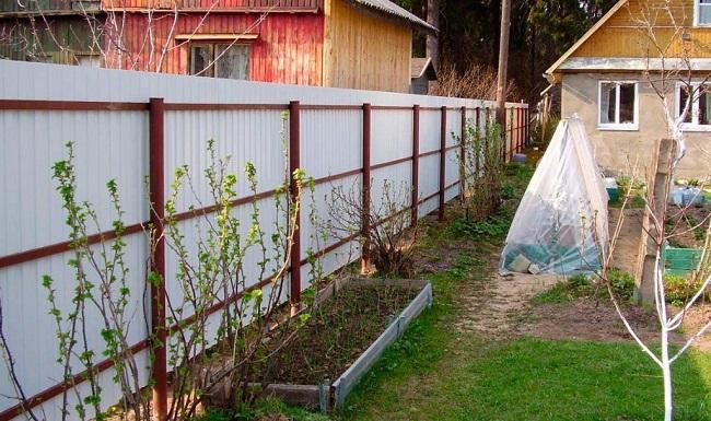 забор из профнастила между участками