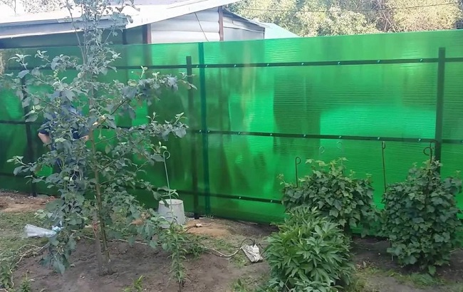 забор из поликарбоната на даче