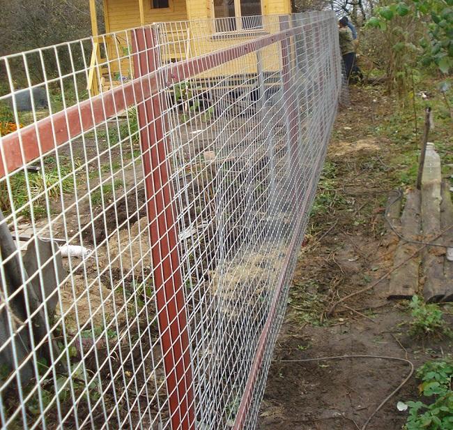 забор из сварной сетки в рулонах