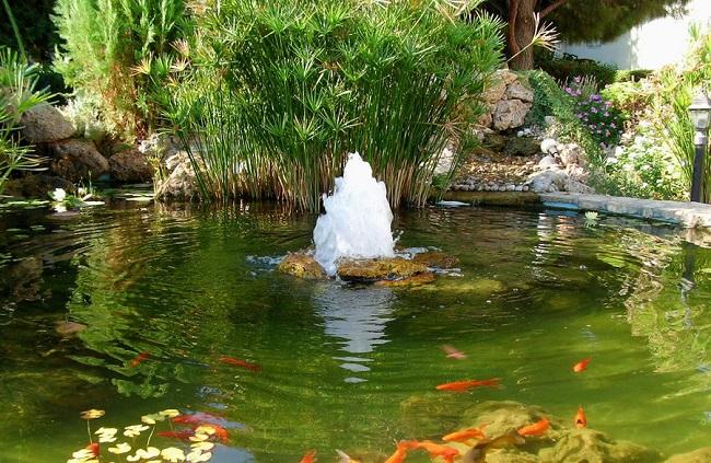 фонтан бьющий из под воды