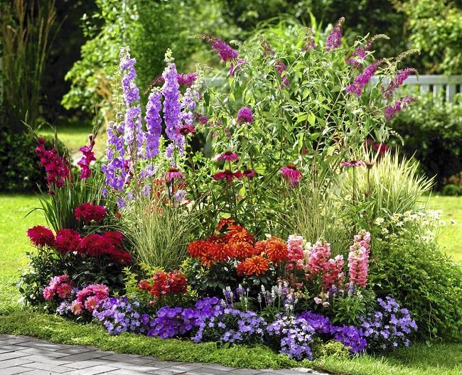 клумба непрерывного цветения на даче