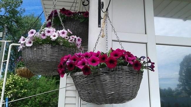 кашпо из ивы для цветов