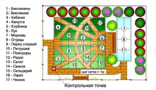 схема высадки растений в декоративном огороде
