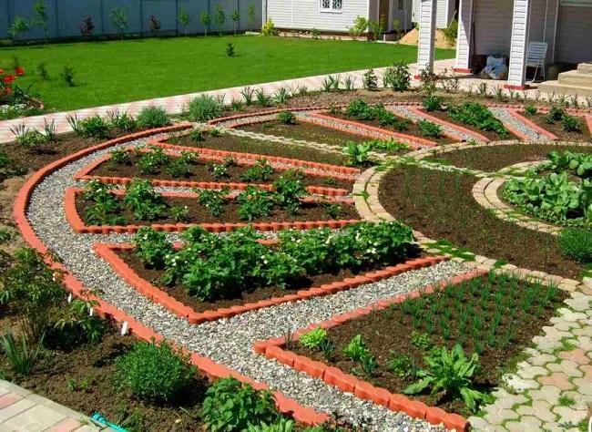 красивый огород во дворе