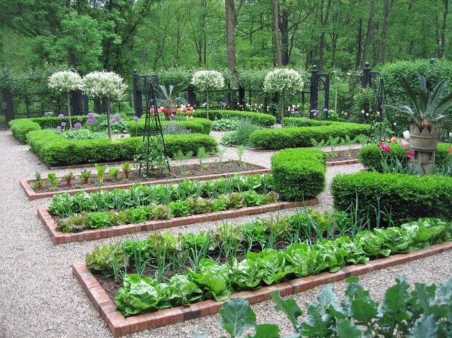 стильный огород на участке