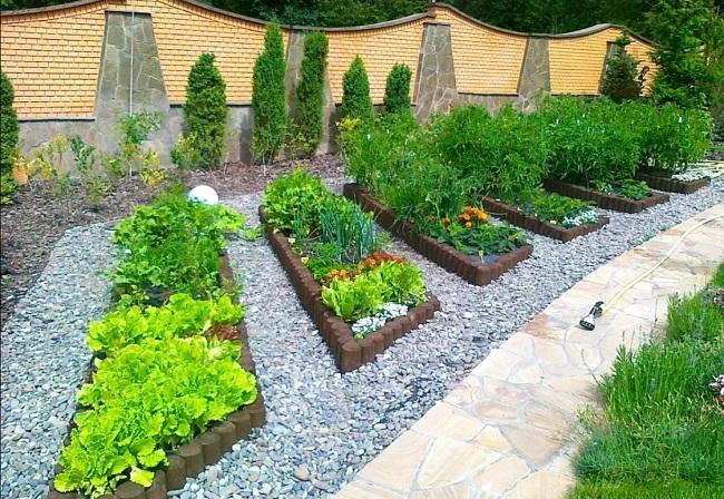 декоративный огород на придомовой территории