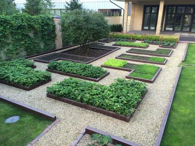 дизайн огорода во дворе