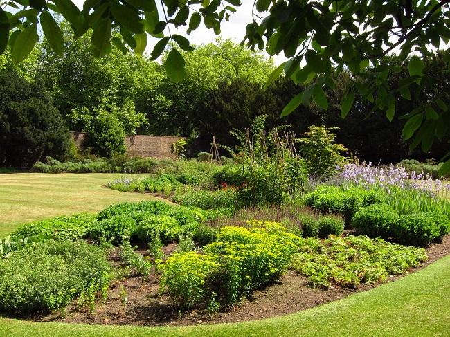 пейзажный декоративный огород
