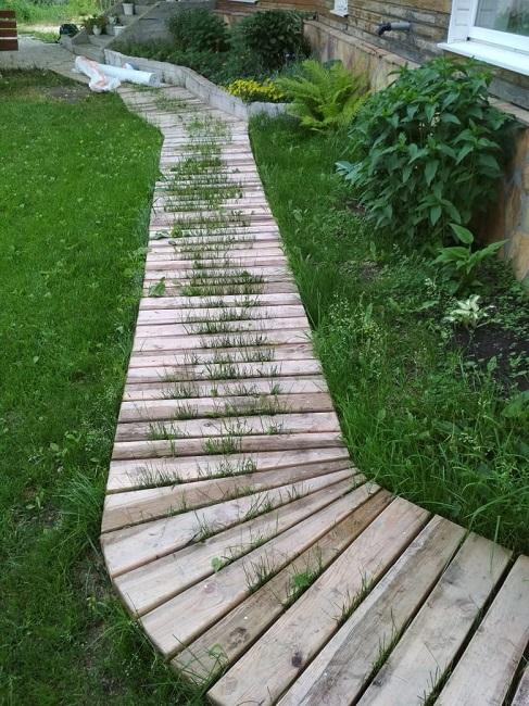 трава сквозь деревянную дорожку