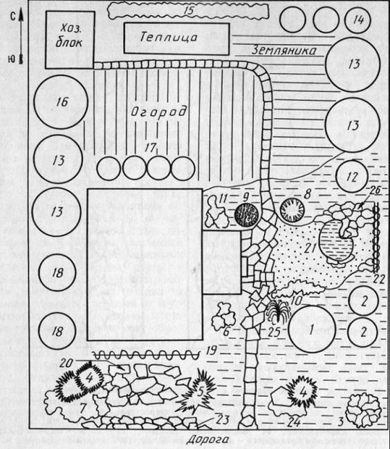 планировка огорода с дорожками