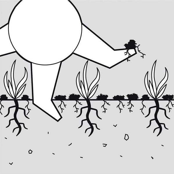 принцип скарификации газона