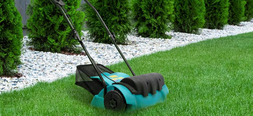 для чего нужен скарификатор для газона