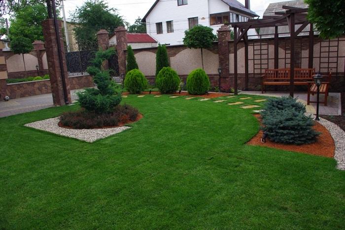 благоустройство и озеленение двора