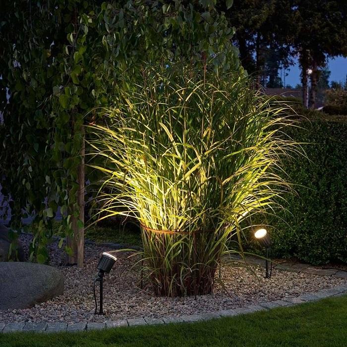 подсветка растений на участке снизу