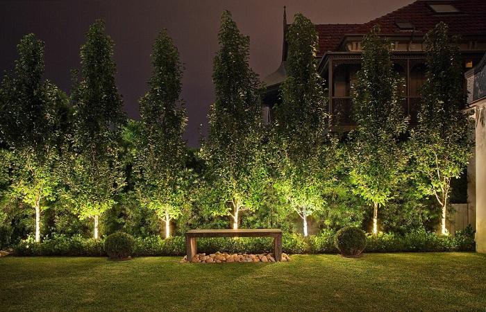 одноуровневая подсветка деревьев