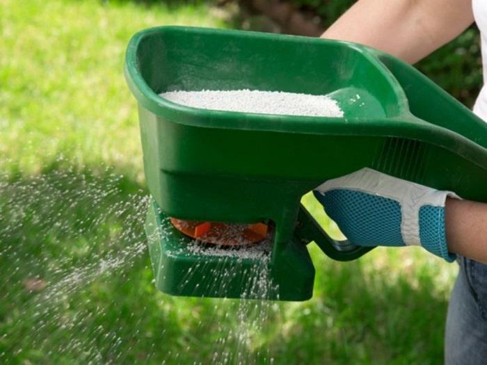 внесение удобрения летом для газона
